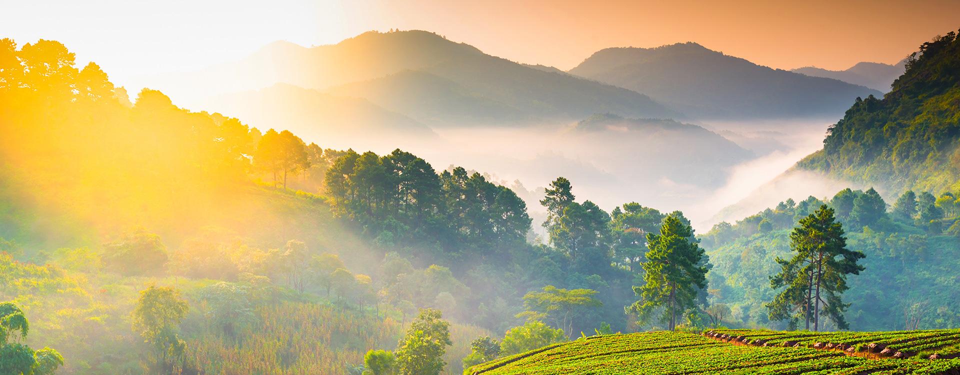 Sonnenaufgang in den Bergen | Tiger Balm